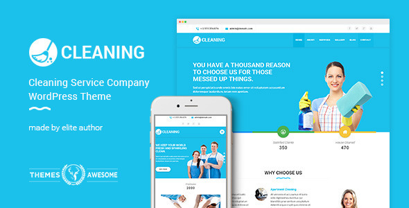 most popular cleaning business themes