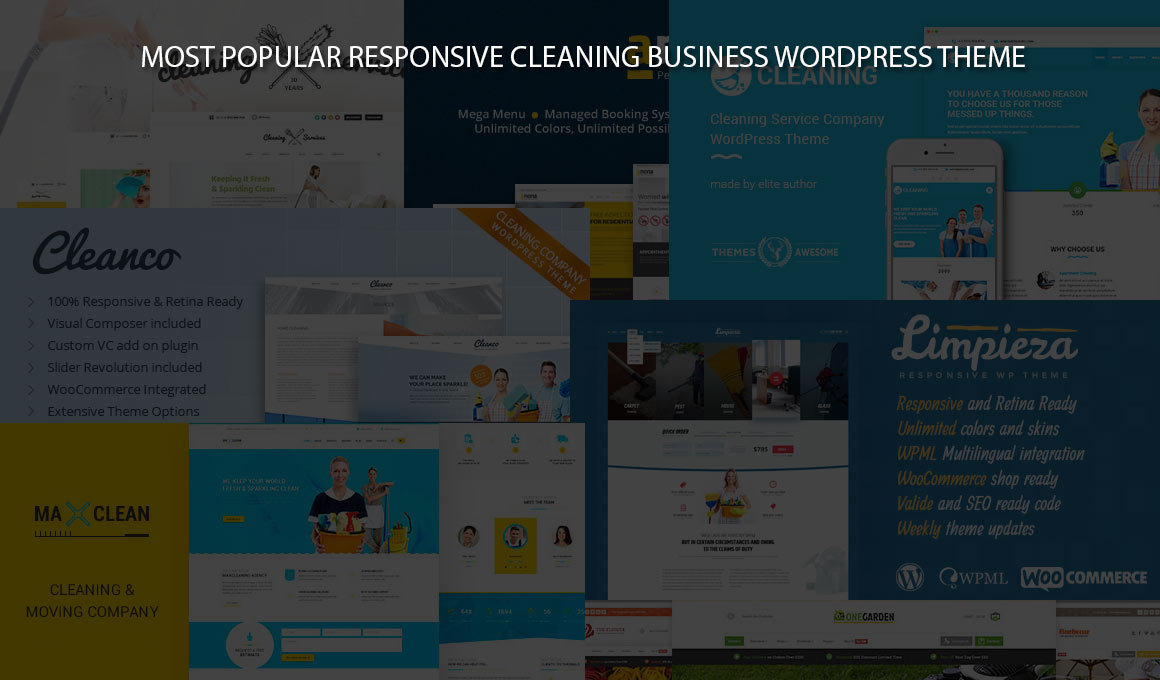 cleaning business wordpress theme