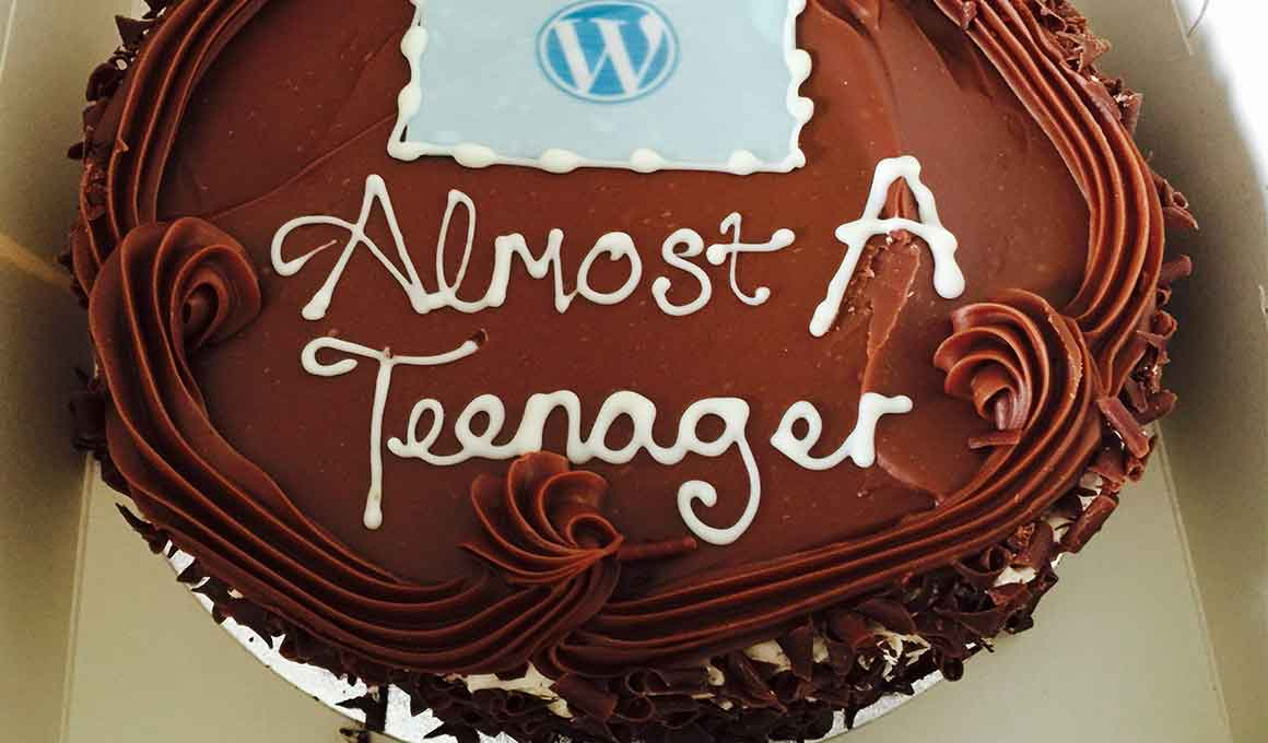 13th Birthday For WordPress